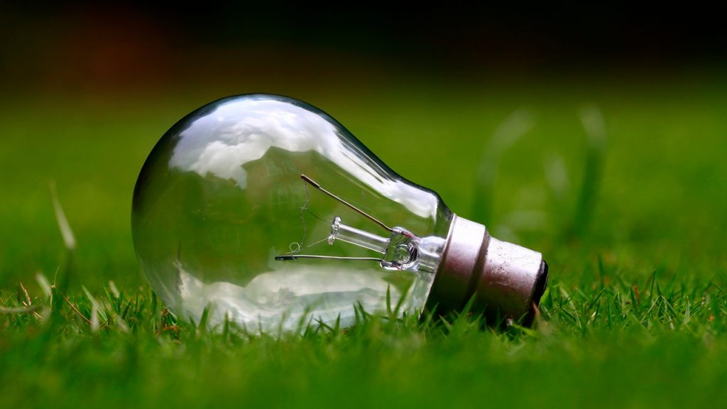 domestic heat pumps, light bulb lying in the grass representing energy efficiency