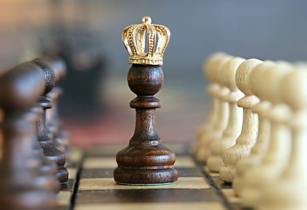 image of a king in chess