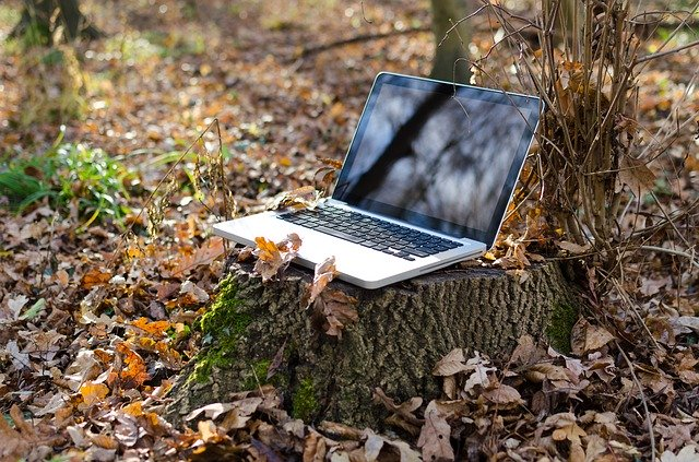 image of laptop amidst a forest representing making your business green