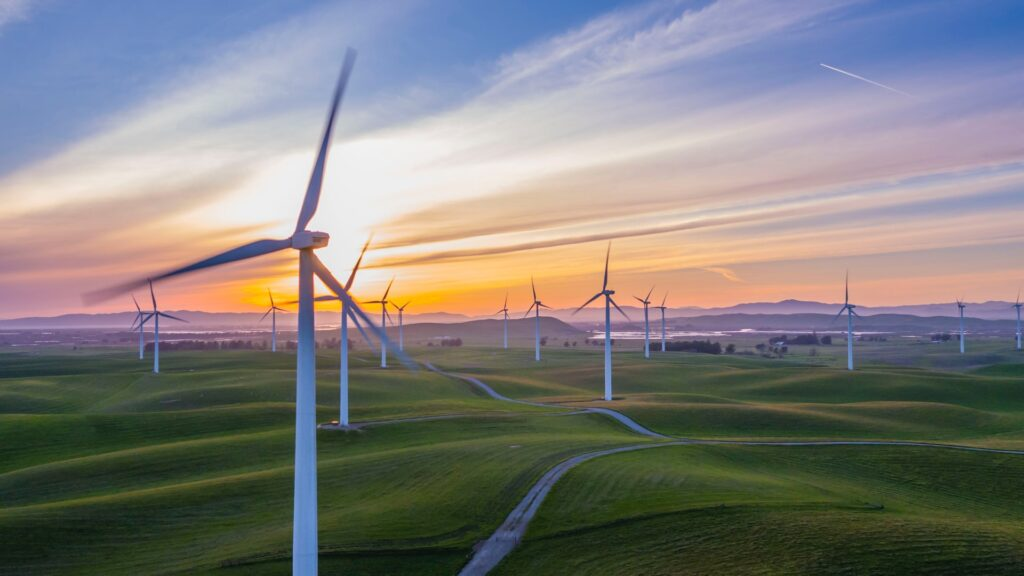 White wind mills placed on a green field with sunset as a backdrop highlighting the importance of choosing the right biomass boiler repair company